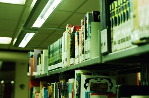 Polica sa knjigama